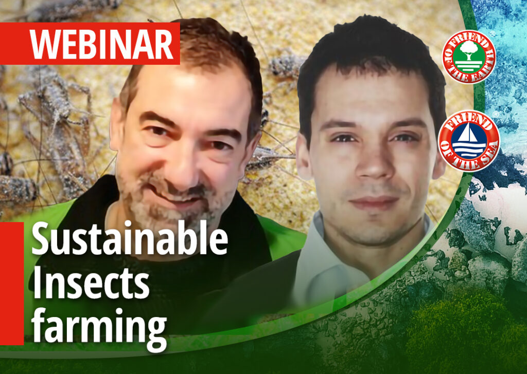 """Webinar on """"Sustainable Insects farming. Case Study Italian Cricket Farm."""" - 28th of April 2021 at 3:00 pm in Milan"""
