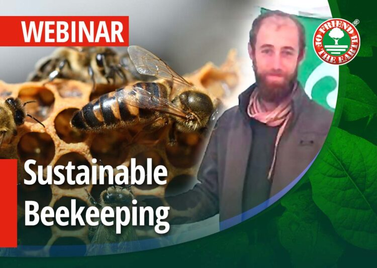 """Webinar on """"Sustainable Beekeeping. Case Study Raglio di Luna""""- 26th of May 2021 at 3:00 pm in Milan, CET"""