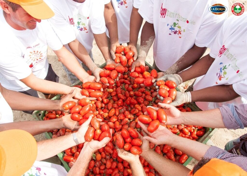 I pomodori La Doria certificati Friend of the Earth da un'agricoltura sostenibile